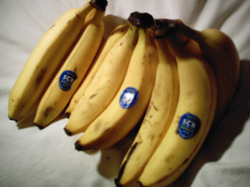 節約にたくさん食べたバナナ