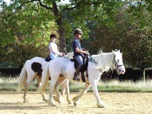 ハイドパークで乗馬