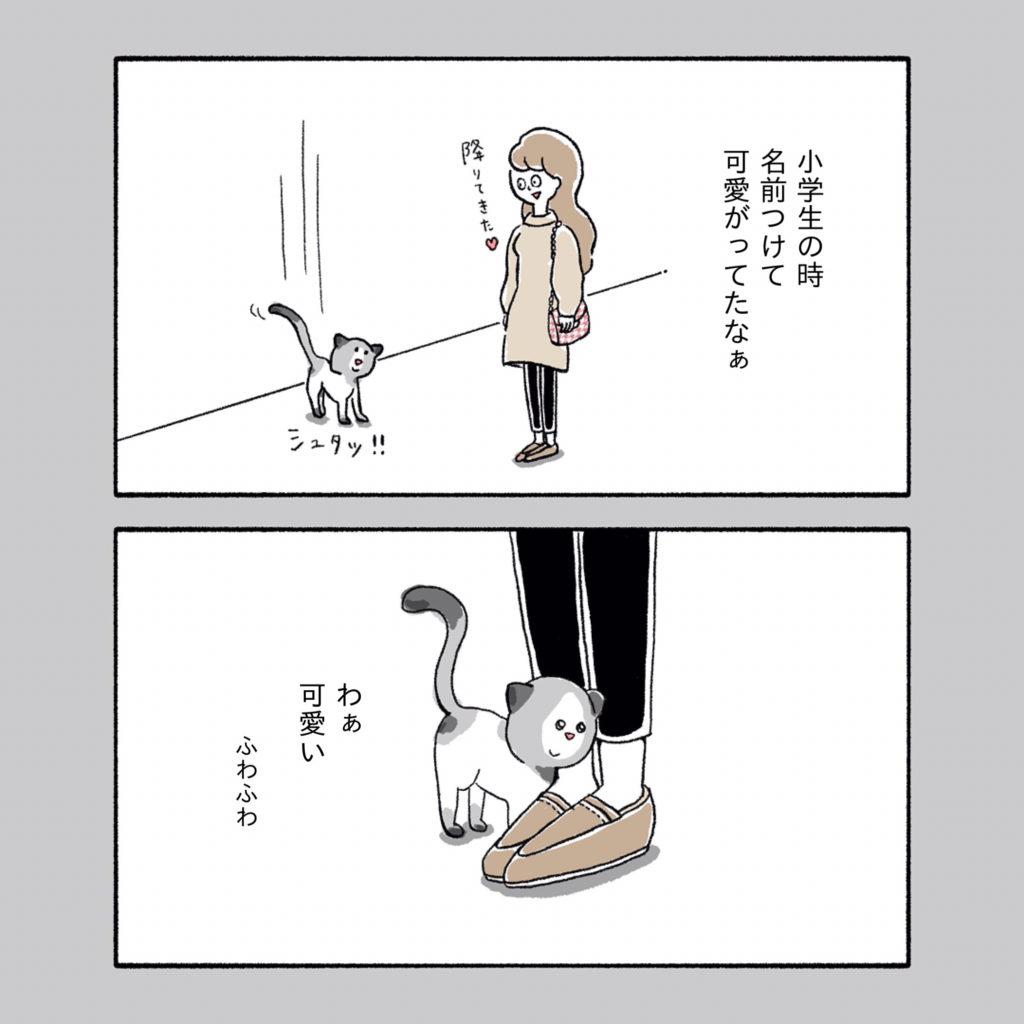 猫 足すりすり 人懐こい 独身アラサー女子 イラスト
