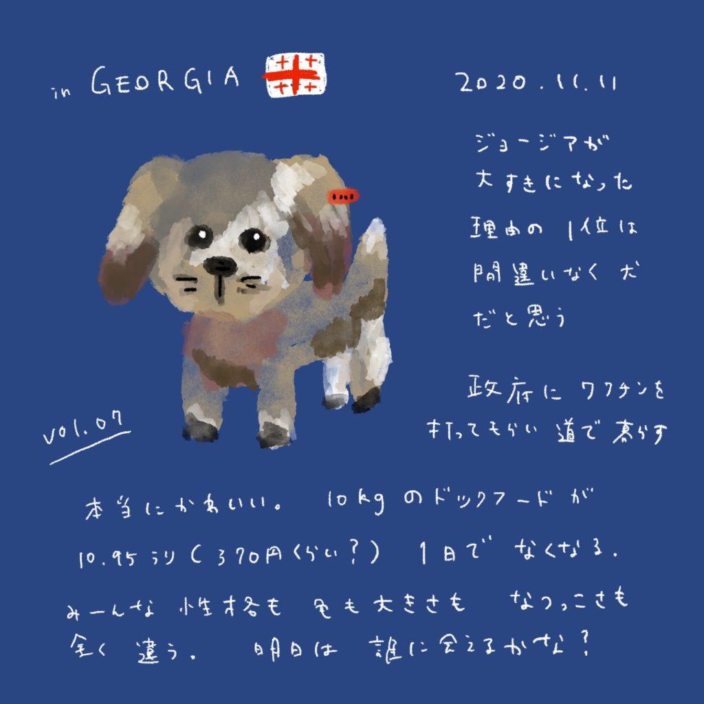 ジョージアの野良犬はみんな良い子